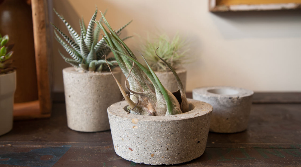 cement_pots (7 of 23)