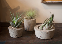 cement_pots (8 of 23)